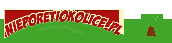 Uzyskiwanie ciepła - kolektory pionowe | Architektura i projektowanie - http://nieporetiokolice.pl/